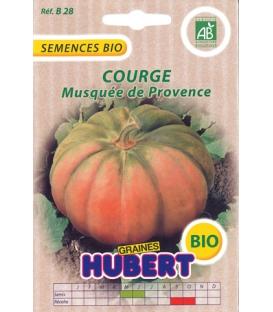 Graines de Courge Musquée de Provence BIO