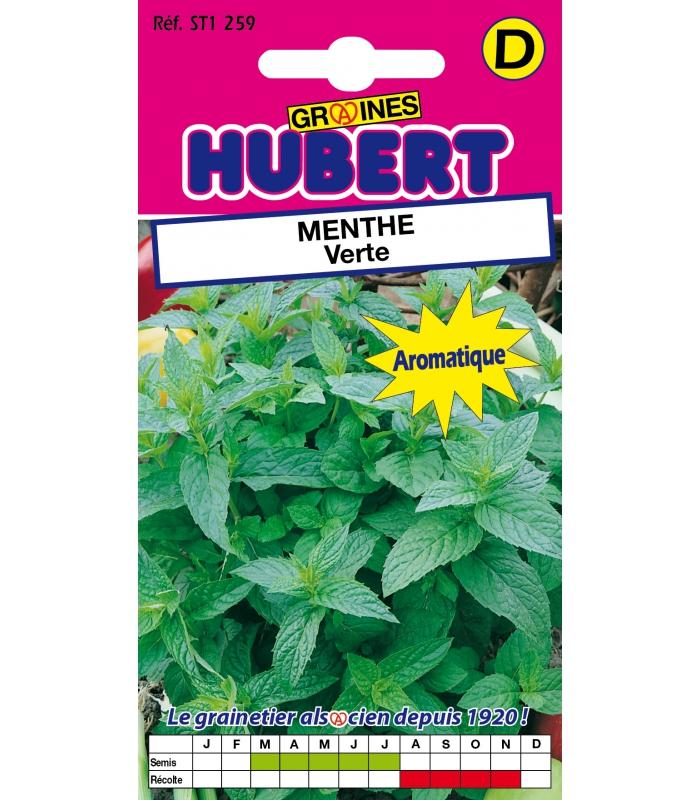 Sachet de graines a semer de menthe poivree aromatique the - Faire pousser de la menthe ...