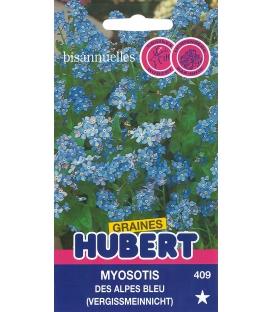 Graines de Myosotis des Alpes Bleu
