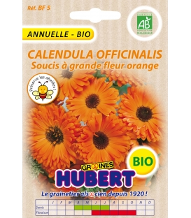 Graines de Soucis Double Calendula Officinalis Orange - © Image protégée téléchargement interdit !