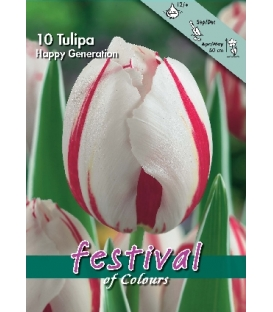 10 Bulbes de Tulipes Triomphe Happy Generation