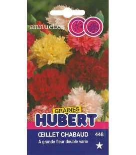 Graines d'Oeillet Chabaud à Grande Fleur Double Varié