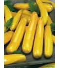 Graines de Courgette jaune Soleil F1