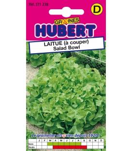 Graines de Laitue Salad Bowl à Couper