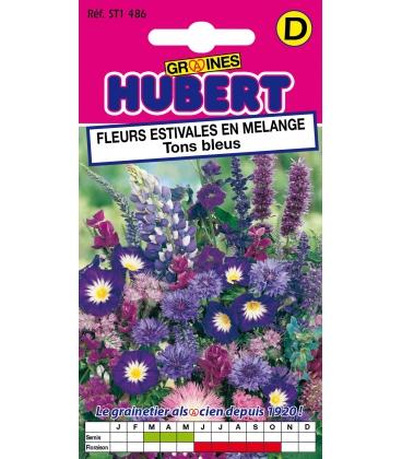 Graines de Fleurs pour Bouquets Bleus