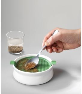 Germoir Coupelle - pour graines à mucilage