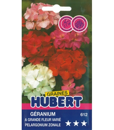 Graines de Géranium à Grande Fleur Varié Pelargonium Zonale
