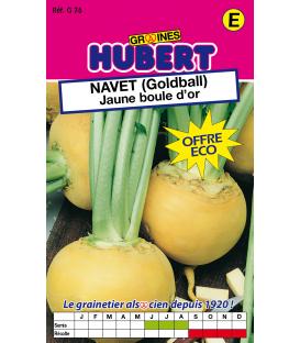 Graines de Navet Jaune Boule d'or - Golball Format ECO