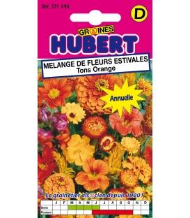 Graines de Fleurs pour Bouquets Orange
