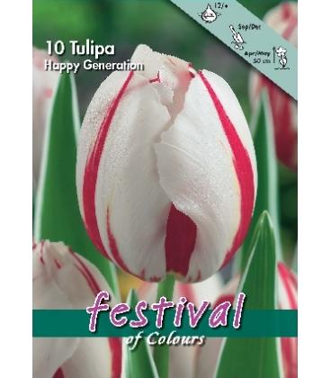 10 Bulbes de Tulipes Triomphe Happy Generation
