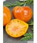 Graines de Tomate Ananas © Image Protégée,Téléchargement Interdit !
