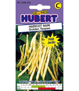 Sachet de 50 Graines de Haricot Nain Golden Teepee