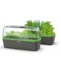 Système Mini-Serre & Jardinière  BoQube Anthracite / Vert