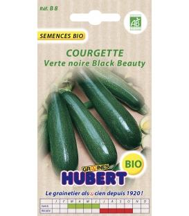 Graines de Courgette Verte Noire Maraîchère BIO