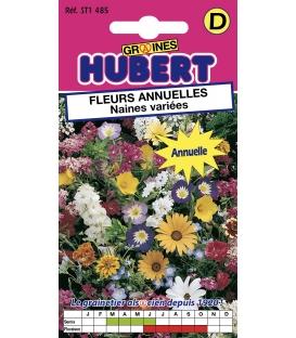 Graines de Fleurs Annuelles Naines Variées