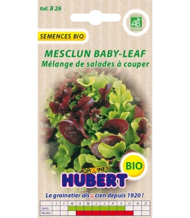 Graines de Mesclun Baby-Leaf BIO