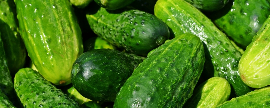 Qu'est-ce qu'un légume-fruit ?
